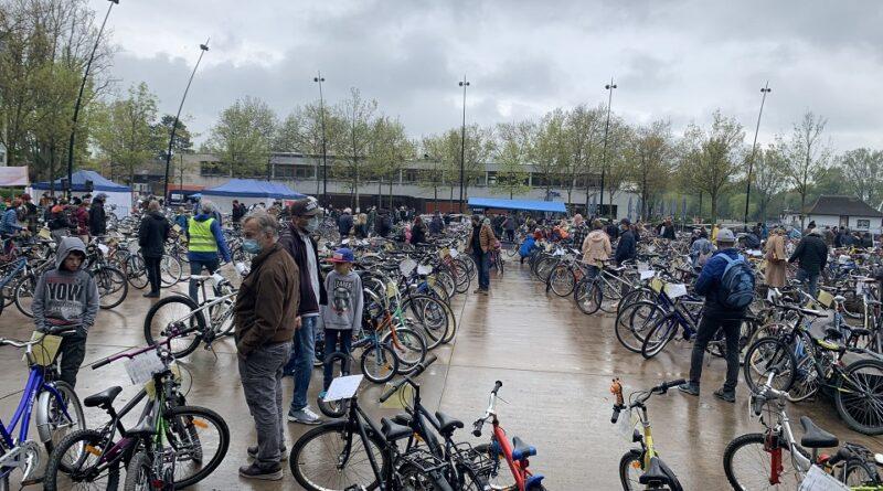 سوق الدراجات الهوائية.. أسعارها رخيصة وزبائنها كثر